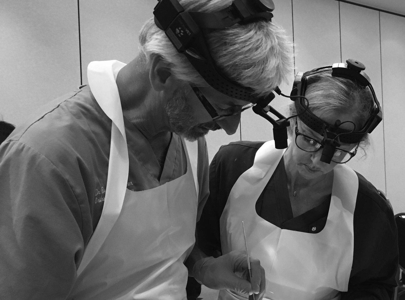 Dr. Palmer working with student in wet lab